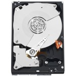 Western Digital Caviar Black HDD